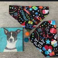 Scrufts Happy Birthday Reversible Dog Bandana