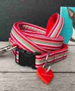 Scrufts Raspberry Ripple Red Striped Dog Collar and Lead With Velvet Lining