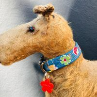 Scrufts Vintage Daisy Floral Dog Collar in Blur