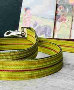 Scrufts Roobarb Lime Striped Dog Lead with Velvet Lining