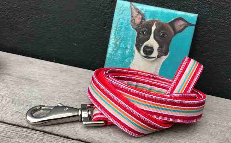 Scrufts Raspberry Ripple Red Striped Dog Lead
