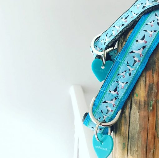 Scrufts Gully Seaside Dog Collar with Velvet Lining