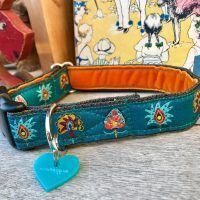 Scrufts Drake Dog Collar in Teal with Orange Velvet Lining