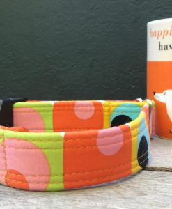 Scrufts Ready Steady Go ! 60's Dog Collar with Velvet Lining