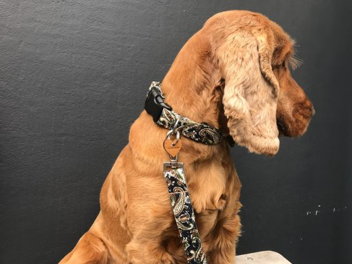 Scrufts Weller Navy Paisley Dog Collar and Lead with Navy Velvet Lining