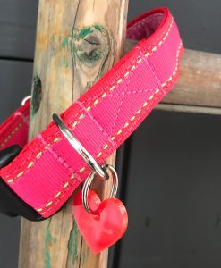 Scrufts Strawberry Summer Pink Striped Dog Collar