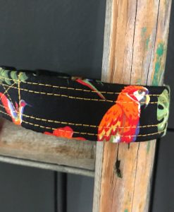 Scrufts Parrot Dog Collar in Black