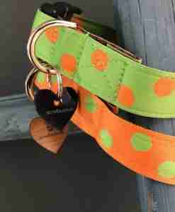 Scrufts Orange Emerald Polka Dot Dog Collar with Orange Velvet Lining