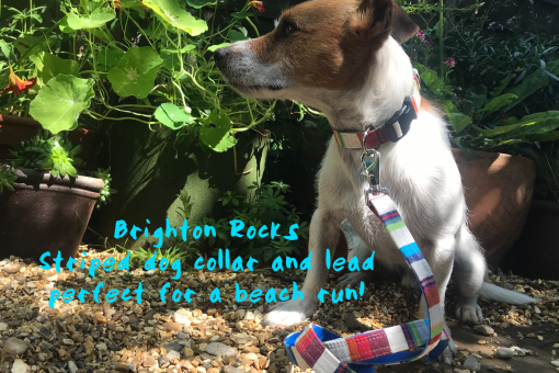 Scrufts Brighton Rocks Striped Dog Collar and Lead Lead with Velvet Lining
