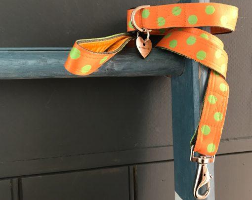 Scrufts Orange Emerald Polka Dot Dog Collar and Lead with Orange Velvet Lining