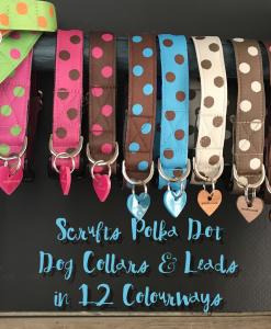 Scrufts' Polka Dot Dog Collars and Leads