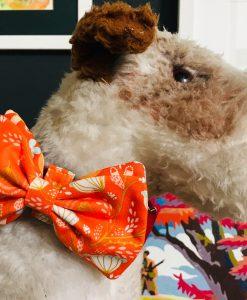 Scrufts Clem Orange Dog Bow Tie