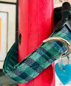 Scrufts Brighton Check Blue/Turquoise Dog Collar