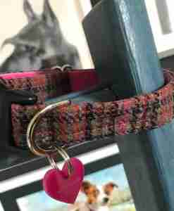 Scrufts Damson Tweed Dog Collar with Pink Velvet Lining