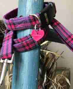 Scrufts Heather Purple Checked Dog Collar and Lead with Plum Velvet Lining