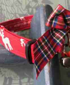 Scrufts Rudi Christmas Dog Collar