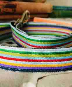Scrufts Striped Dog Lead Titch