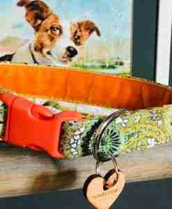 Nutley Corduroy Dog Collar