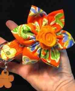 Scrufts Marigold Floral Dog Collar with detachable bloom