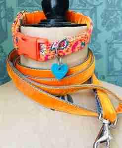 Scrufts' Burwash Country Corduroy Dog Collar with Orange Velvet Lead