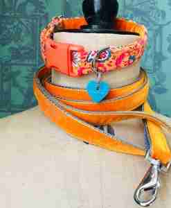 Scrufts' Burwash Country Corduroy Dog Collar with Orange Velvet Lead