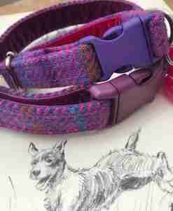 Scrufts' Very Berry Velvet Lined Harris Tweed Dog Collar