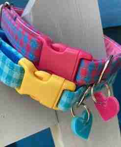 Scrufts Picnic Checked Dog Collar in Blue or Pink with Velvet Linings