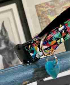 Scrufts Peloton Contemporary Dog Collar with Black Velvet Lining