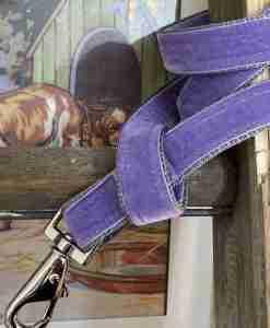 Scrufts Lily Apple Violet Velvet Dog Lead