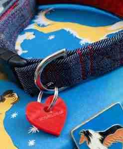 Scrufts Levi Denim Dog Collar with Velvet Lining
